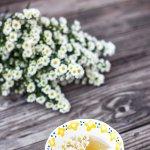 Kamilleblüten und Kamillentee, Entspannung und Besinnung, Foto: Ornella Binni