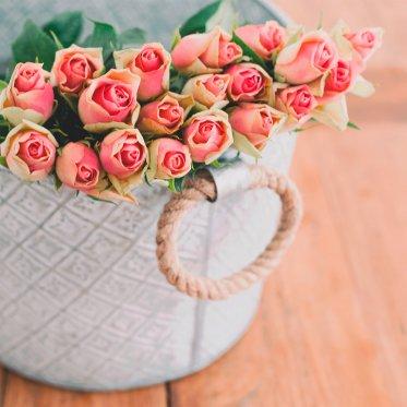 Rosen im Korb